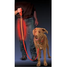 Nite Ize Nite Dawg LED Pet Leash